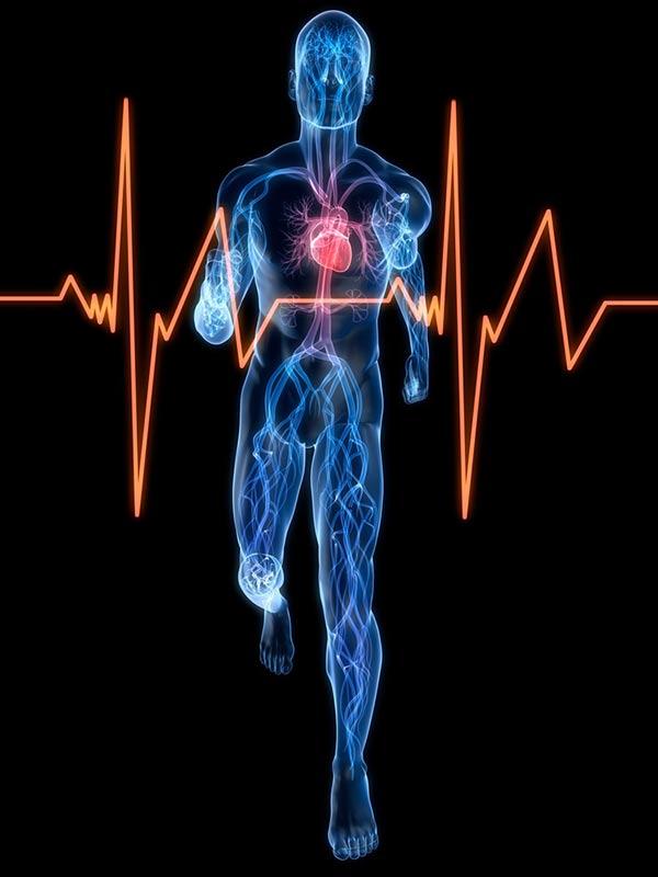 Deporte y salud: beneficios del ejercicio para corazón y mente