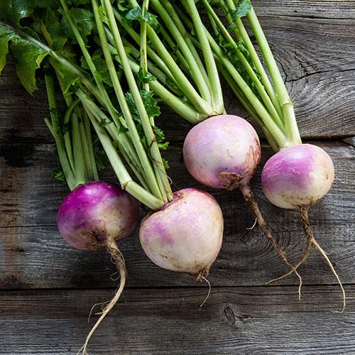 Alimentos principales de la dieta nórdica: nabo