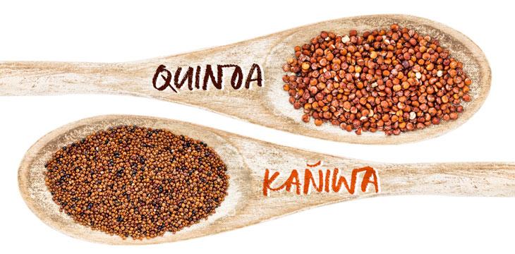 Kañiwa, qué es, origen, propiedades y composición nutricional