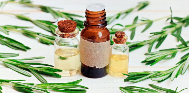 Resultado de imagen para Usos medicinales del romero