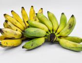 Plátano, nutritivo y muy saludable