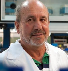 Mariano Esteban, virólogo experto en ébola