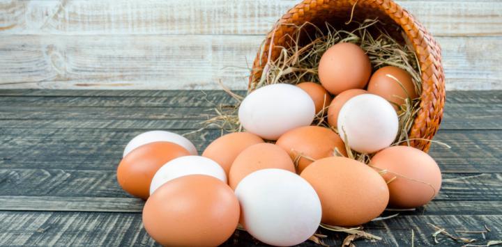 9. Huevo