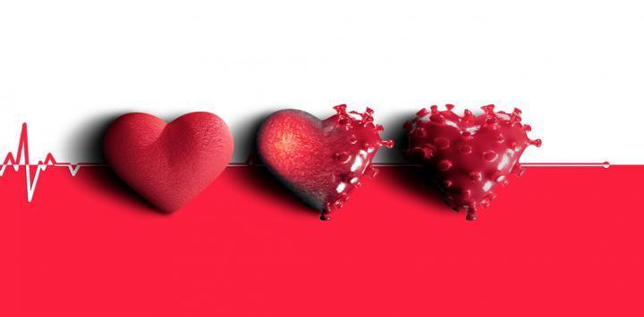 El impacto del COVID-19 sobre el corazón podría ser duradero