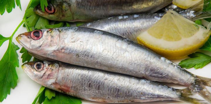 Pescado contaminado por mercurio
