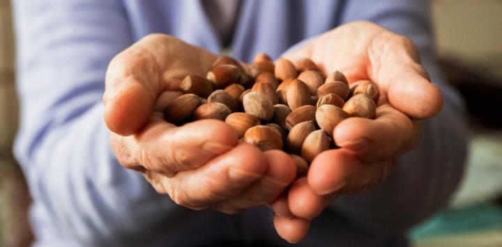 Hombre mayor sostiene frutos secos en sus manos