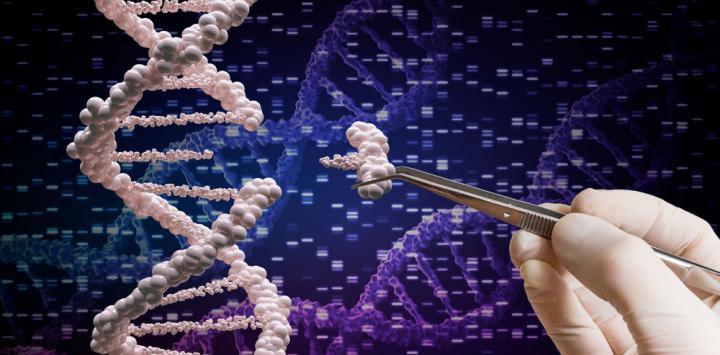 Resultado de imagen de terapia genica