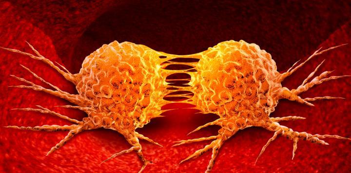 Resultado de imagen para farmaco metastasis