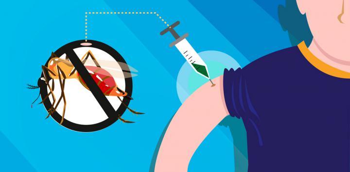 ¿Es seguro vacunarse contra el dengue?