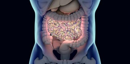 El microbioma intestinal, implicado en la esclerosis múltiple