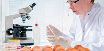 Científica en laboratorio investigando la salmonella