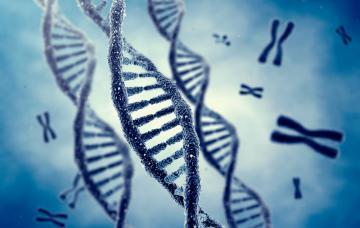 Análisis genómico y medicina personalizada