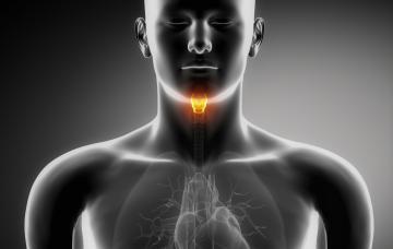 Qué es el cáncer de laringe