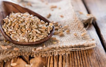 Espelta, el cereal más completo