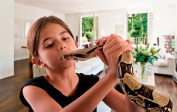 Serpientes en casa