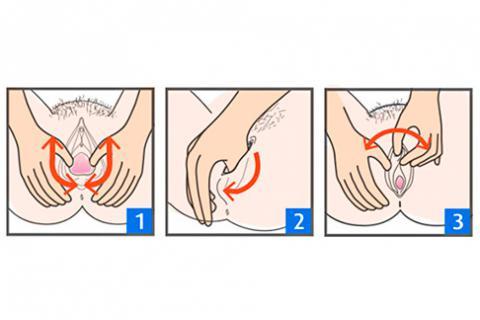 El mecanismo improvisado del aumento del miembro viril