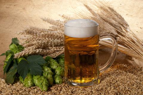 Resultado de imagen de componentes de la cerveza