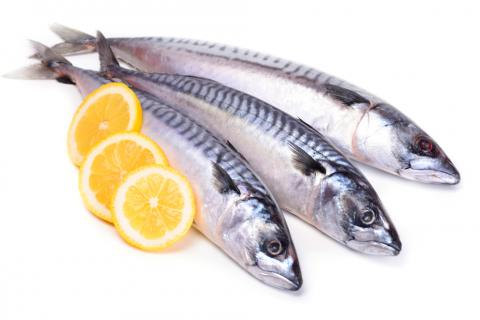 ¿Pescado azul o blanco? Características y diferencias ...