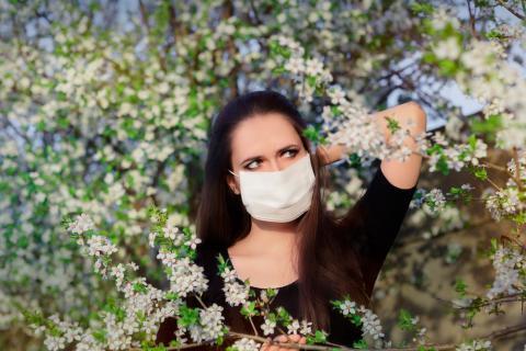 Prevención de la alergia