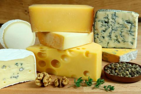 Resultado de imagen para quesos fermentados