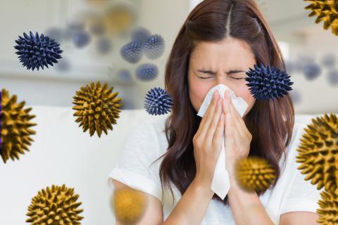 Causas de la gripe