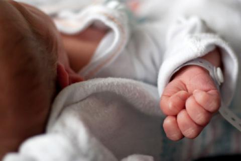 Trámites para inscribir a tu bebé