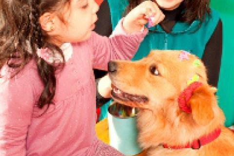Terapias con animales para el autismo