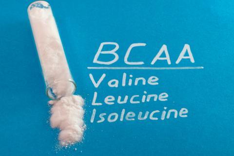 BCAAs: aminoácidos de cadena ramificada