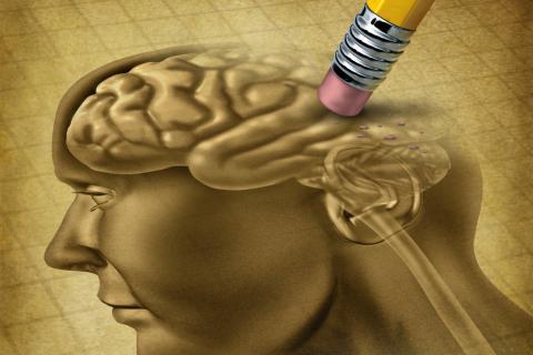 Qué es la amnesia y por qué se produce