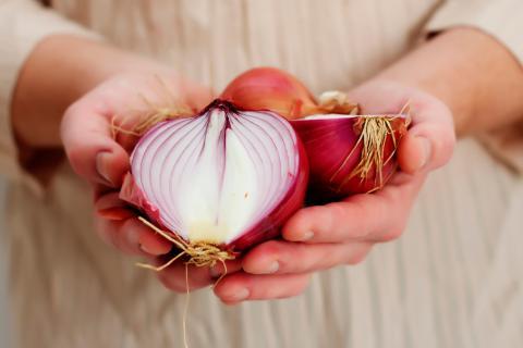 Características nutricionales de la cebolla