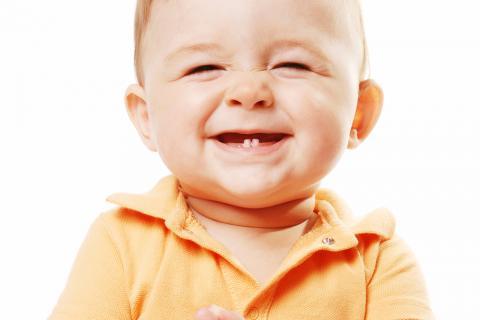 Cuándo comienza la dentición del bebé. Un bebé sonríe mostrando sus  primeros dientes 2e91cf8ff5c1