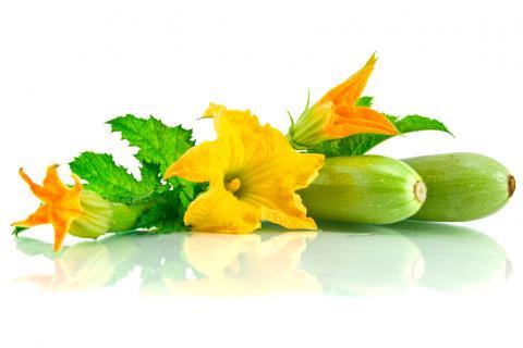 Cocinar con flores