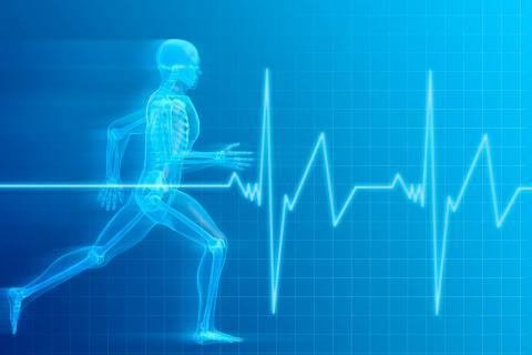 Reconocimiento médico deportivo, qué pruebas se realizan y cuándo