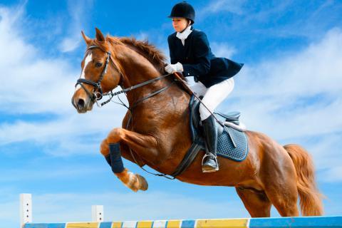 Una mujer salta una valla con su caballo