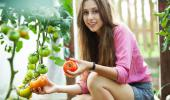 Cultiva tu propio huerto en casa