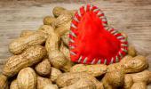 Corazón de peluche sano gracias a los cacahuetes