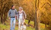 Una pareja de adultos mayores pasea con su perro por el campo