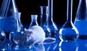 Farmaco tumores ratones