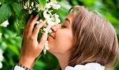 Una mujer huele las flores de una planta