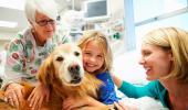 Una niña abraza a un perro durante su sesión de perroterapia