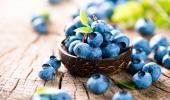 Arándano, antiinflamatorio natural y antiséptico urinario