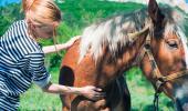 Mujer acariciando a un caballo con cólico equino