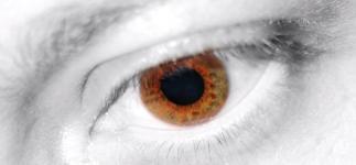 Retinosis pigmentaria: una de las principales causas de ceguera