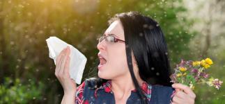 La alergia durará más este año, pero será menos intensa
