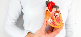 Un fármaco para la artritis podría prevenir la estenosis aórtica