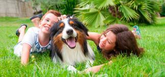 Las mascotas potencian la autoestima y el desarrollo de los niños