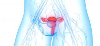 Ovarios artificiales de impresión 3D para restaurar la fertilidad