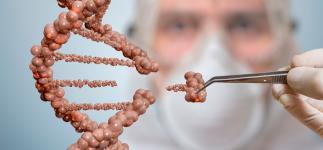 Nueva terapia génica para tratar la enfermedad de Wilson