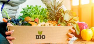 Alimentos ecológicos: ¿Son mejores que los convencionales?