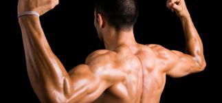 Los mejores ejercicios para fortalecer tu espalda